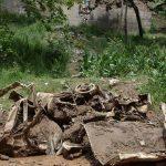 سیل در لواسان و رودبارقصران